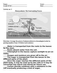 act 2 photosysnthesis.doc