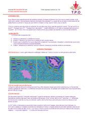 tp n° 06  préparation de savon.pdf