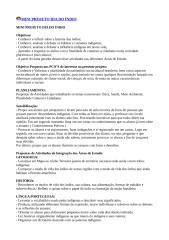 MINI PROJETO DIA DO ÍNDIO.doc